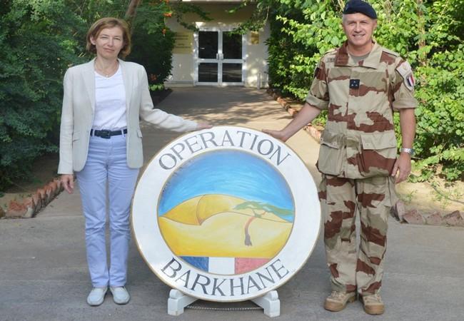 Arrivée de la ministre française des Armées, Madame Florence Parly au Tchad, début de sa tournée au Sahel